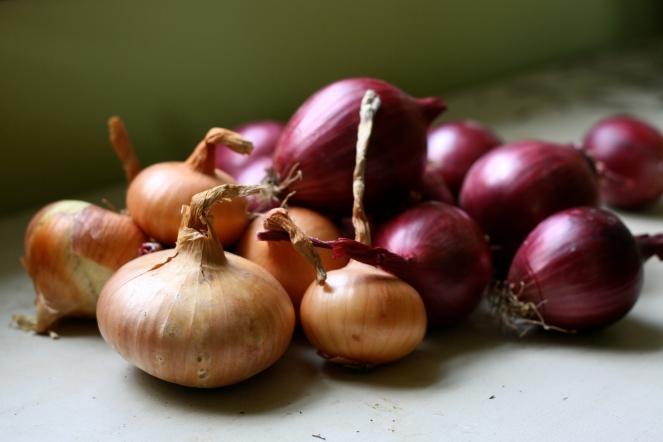 """""""Organic Onions"""" © Susy Morris, 2009. CC BY-NC 2.0."""