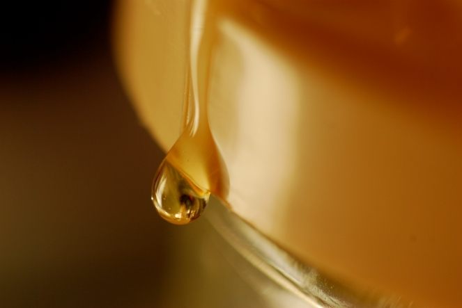 """Honey"" © Dino Giordano, 2008. CC BY 2.0."