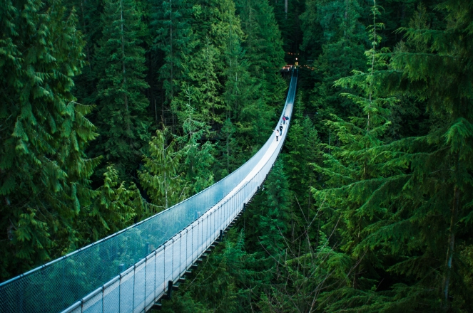 """Capilano Suspension Bridge"" © Michelle Lee, 2011. CC BY-NC-ND 2.0."